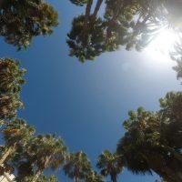 Glutenfrei essen im Urlaub auf Gran Canaria