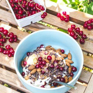 Quark und Mandelmus zum Frühstück