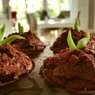 Schokoladen Pflanzen Muffins glutenfrei